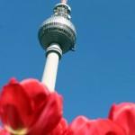 Texter in Berlin, nicht nur im Frühling eine gute Wahl.